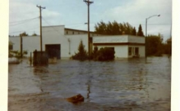 flood1[1]